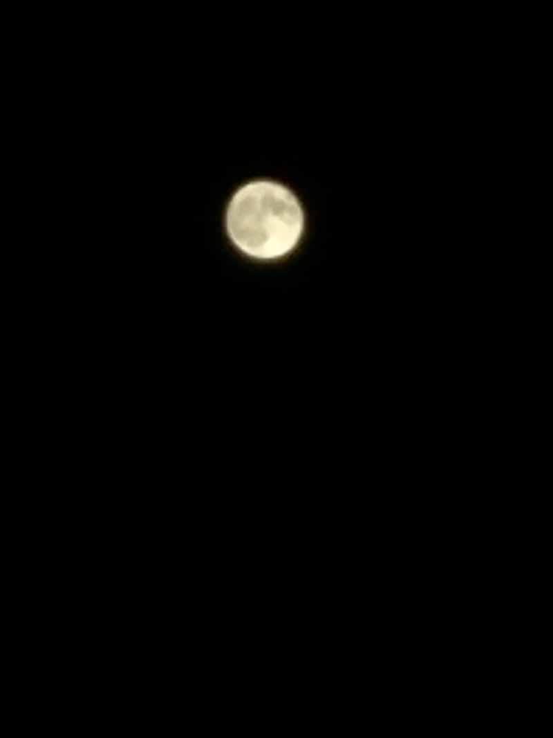 月撮りカメラで撮影