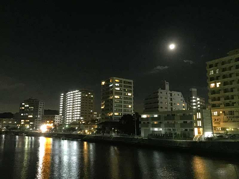 夜の川沿いもイイ感じ