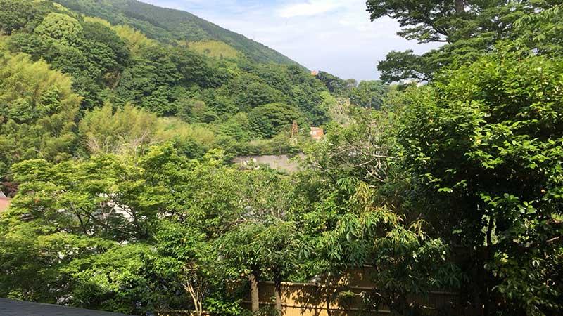 緑豊かな連なる山々