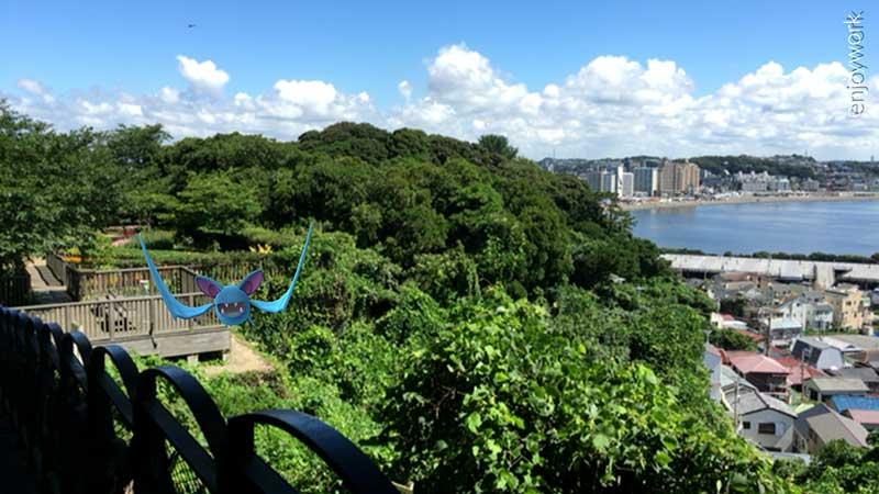 昼間はこんなに素敵な景色が広がっています