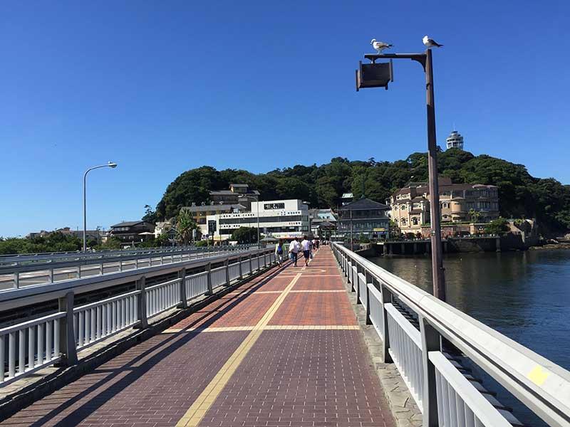ポケモンGOポケモン人気で注目を集める江ノ島