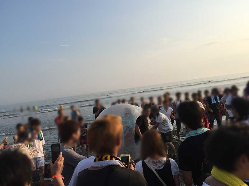 【海夏フェスの心得】「水曜日のカンパネラ」コムアイがウォーターボールで海に突っ込んだ!さすがです。