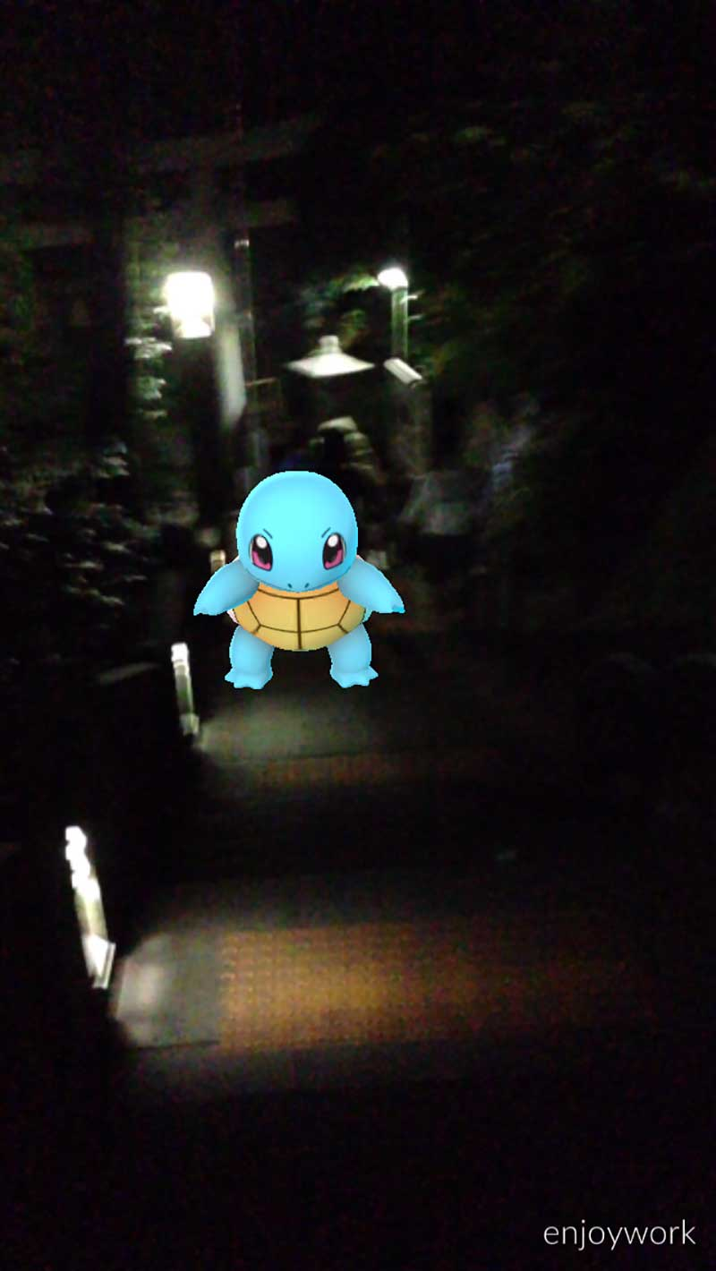 江ノ島でゲットした「ゼニガメ」