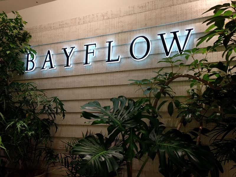 BAYFLOW