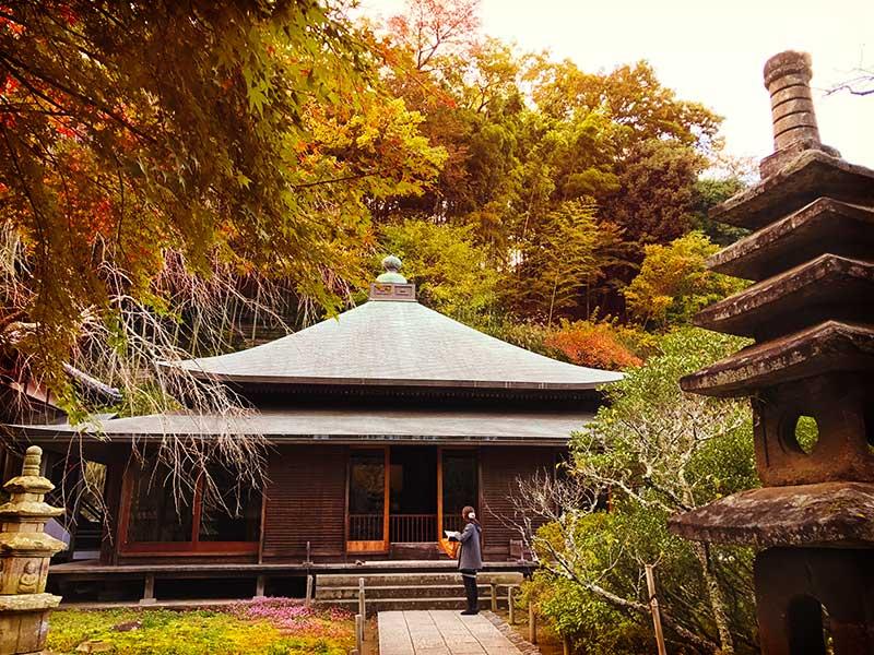 【北鎌倉おすすめ紅葉名所】縁切りのパワースポット「東慶寺」で淡い紅葉を楽しむ