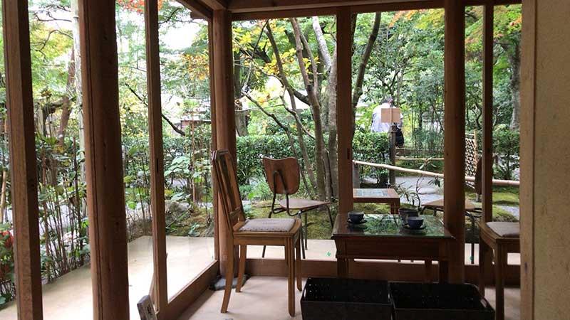 窓からは境内の木々が見えます