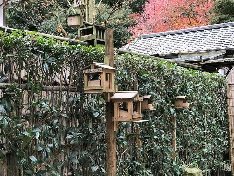 小鳥の餌付け台