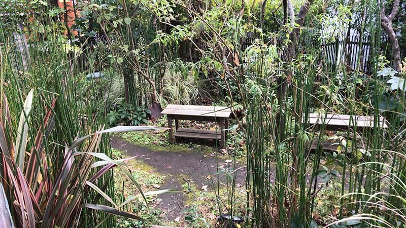 庭も鬱蒼として雰囲気あります