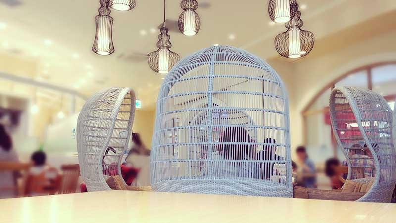 鳥かごの中で癒される