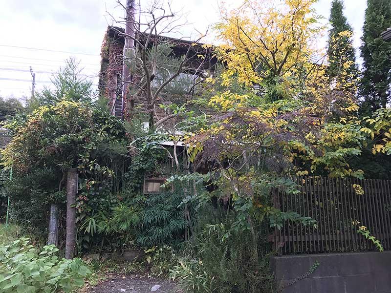 鬱蒼とした木々に囲まれた古民家