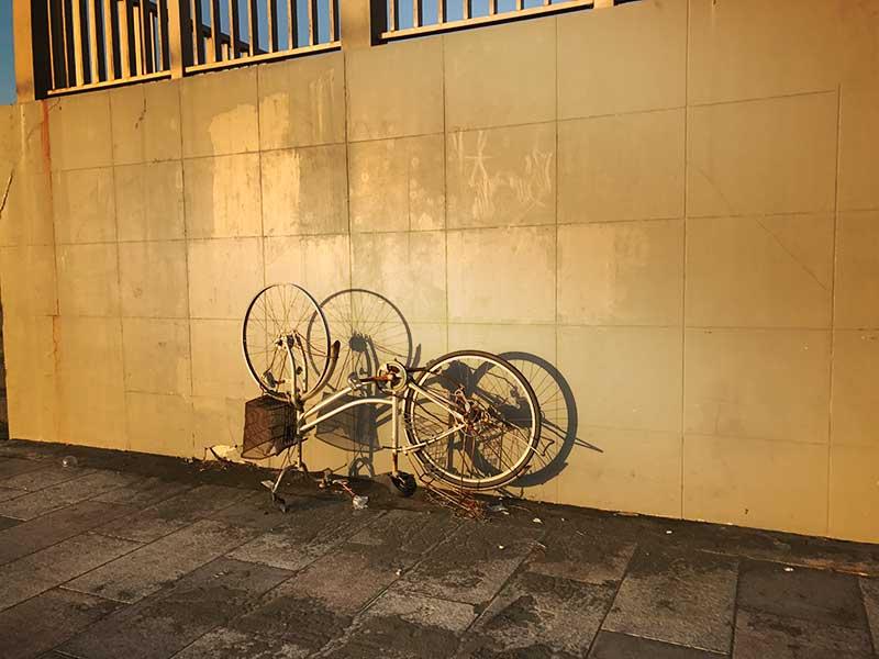 乗り捨てられた自転車も画になります