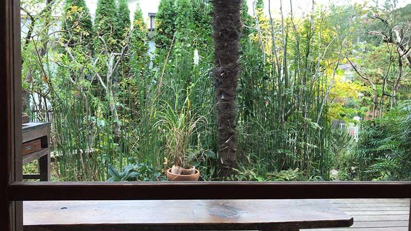 窓から庭を眺めながらくつろげます
