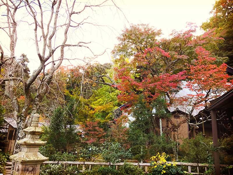 縁切り寺としても有名な「東慶寺」