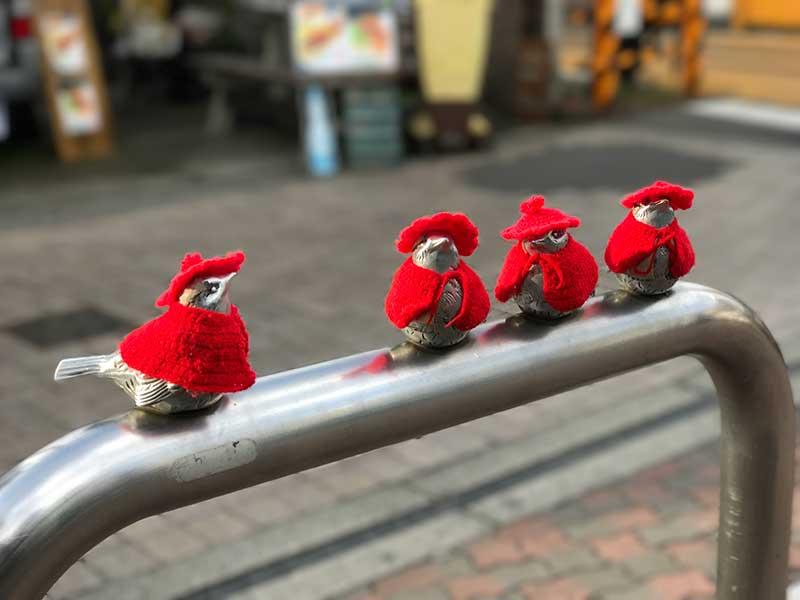 江ノ島駅前でいつもの小鳥さんがお出迎え