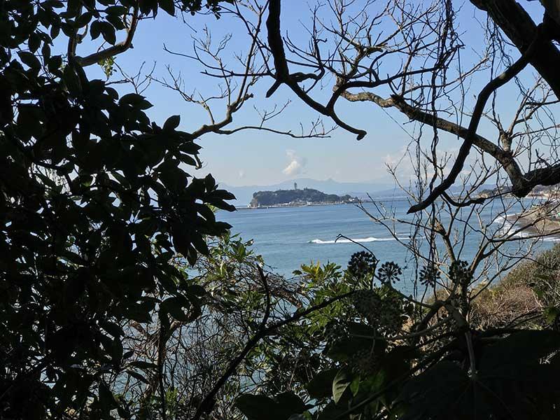 木々の間から見える江ノ島