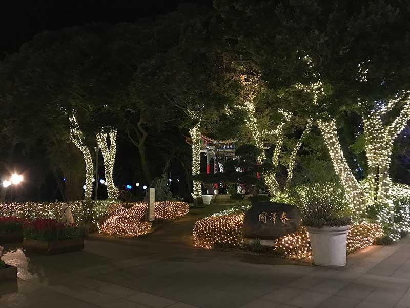 木々もライトアップ