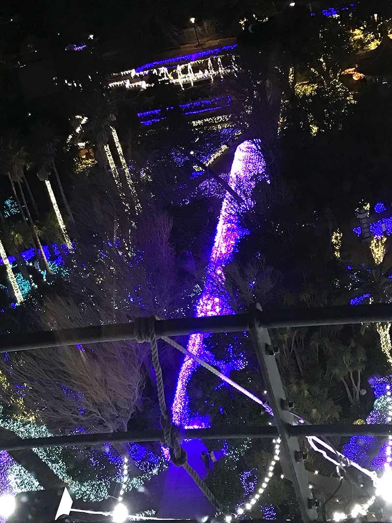 「湘南光のトンネル」を真上から眺める
