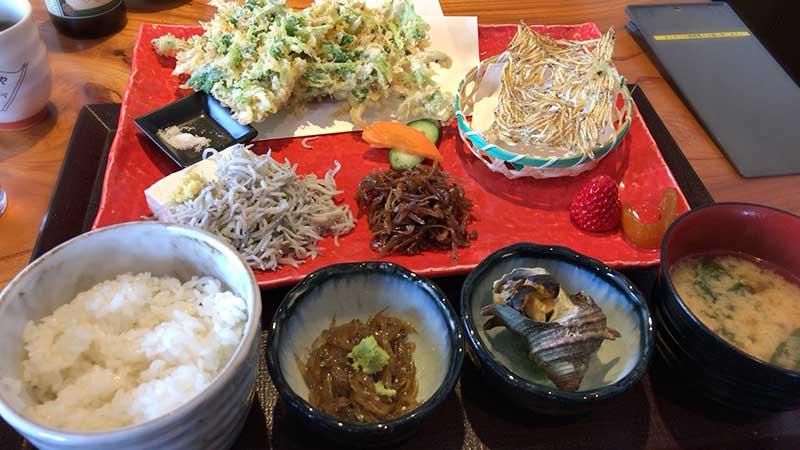 出ました湘南の定番「しらすづくし定食」