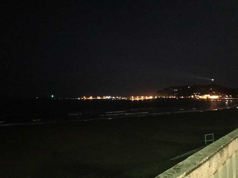 片瀬海岸東浜~腰越海岸には夜光虫いません