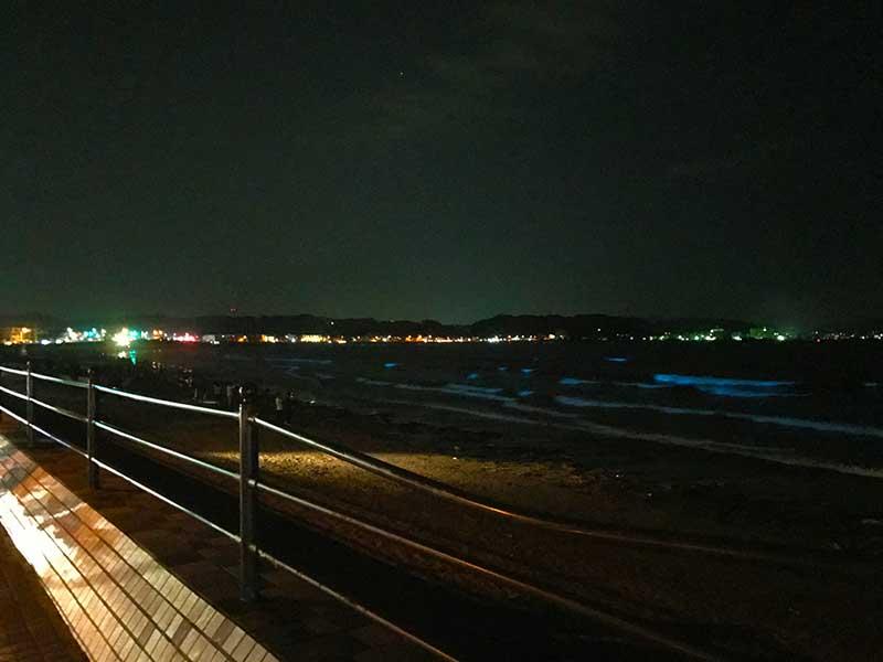 由比ヶ浜海岸が一面青く光っている