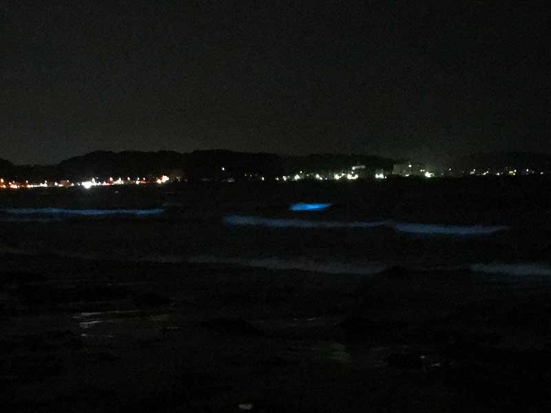 沖の方で青く光る塊