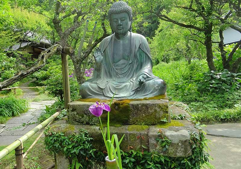 仏像と花菖蒲