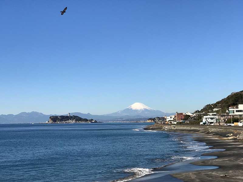 富士山と江ノ島と鳶のスリーショット!