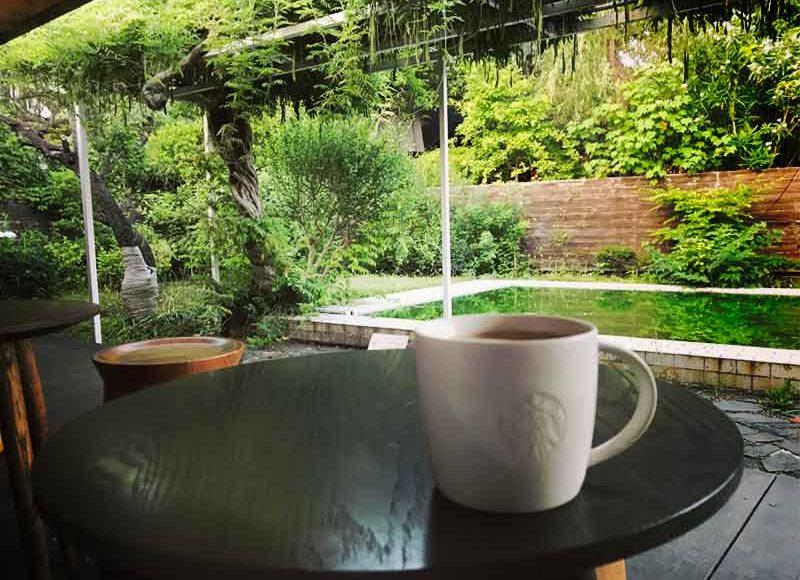 【スタバ鎌倉御成町店】平屋の中に緑とプール!日本一すてき&意識が高いカフェ!読書ノマドだらけで長居して、混雑するよね