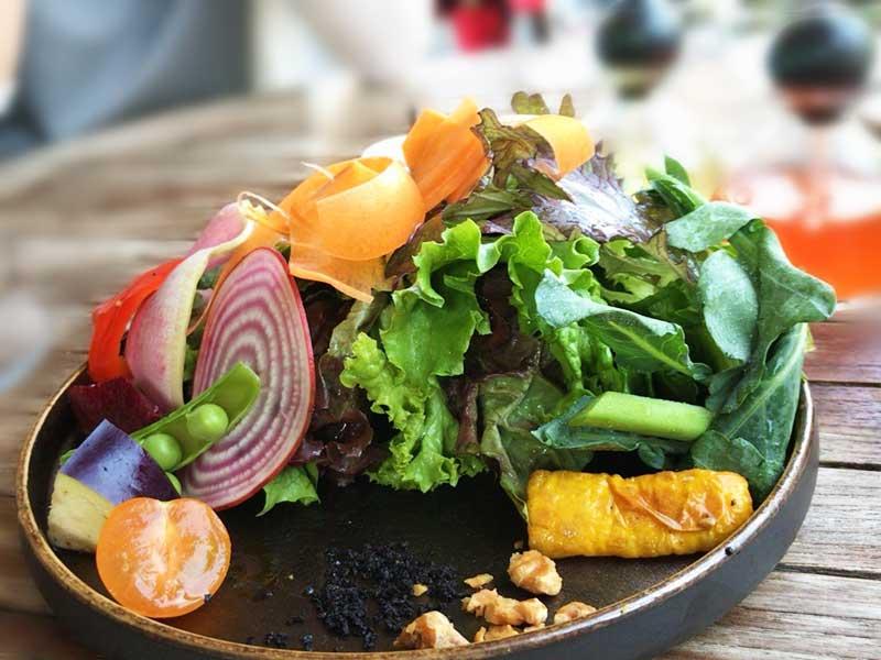 三崎野菜のガーデンサラダ