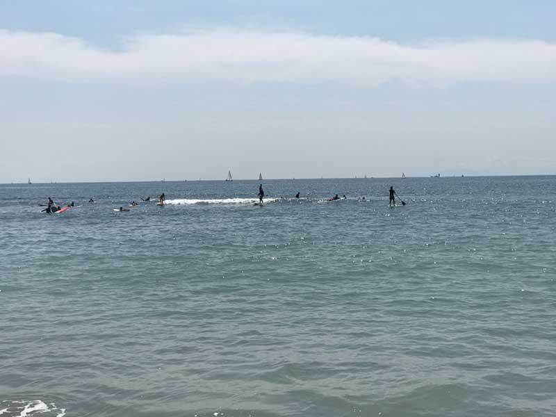 海にはのんびりサーファー