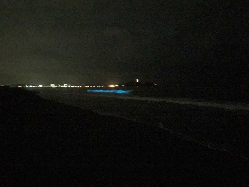 江ノ島の方から波の流れに沿って光る夜光虫