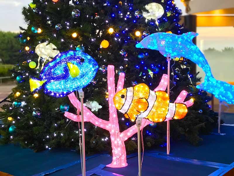 【新江ノ島水族館】期間限定の「アクアツリーイルミネーション」を見逃すな!Instagramチャーンス!