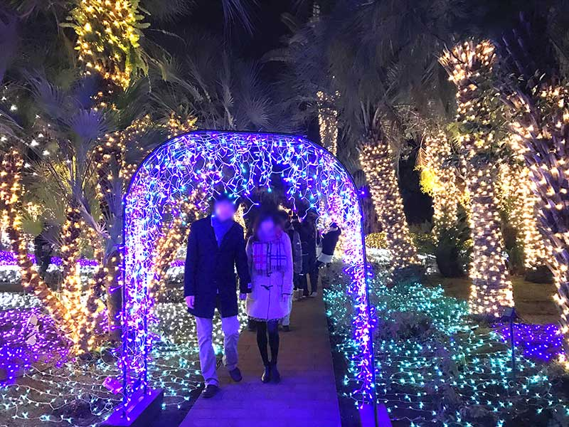 【江ノ島おすすめデートコース】期間限定イルミネーション「湘南の宝石」はいつまで?まだ間に合う?
