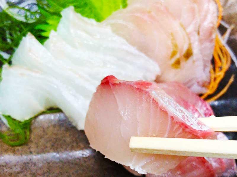 【江ノ島食堂いのうえ】路地裏で地元漁師おすすめ地魚海鮮グルメを発見!