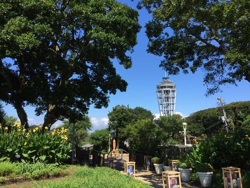 江ノ島の頂上のタワー