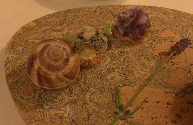梅雨の情景二種(紫陽花・蝸牛)