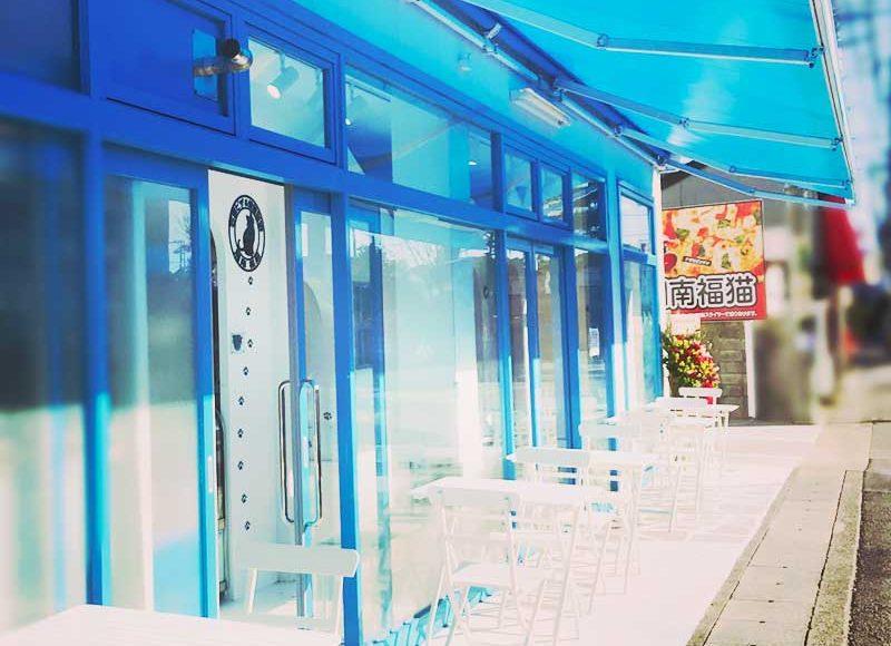 【祝オープン!湘南福猫レビュー】白と青が鮮やか!窯焼きピザがもっちり旨い!本格焙煎珈琲で食後はまったりくつろげるカフェ