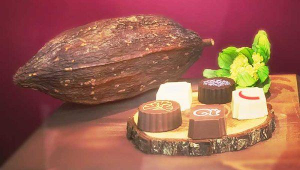 【バレンタインは紅谷チョコ】クルミッ子で有名な鎌倉紅谷が和風チョコレートを発売中!リスもかわいい!