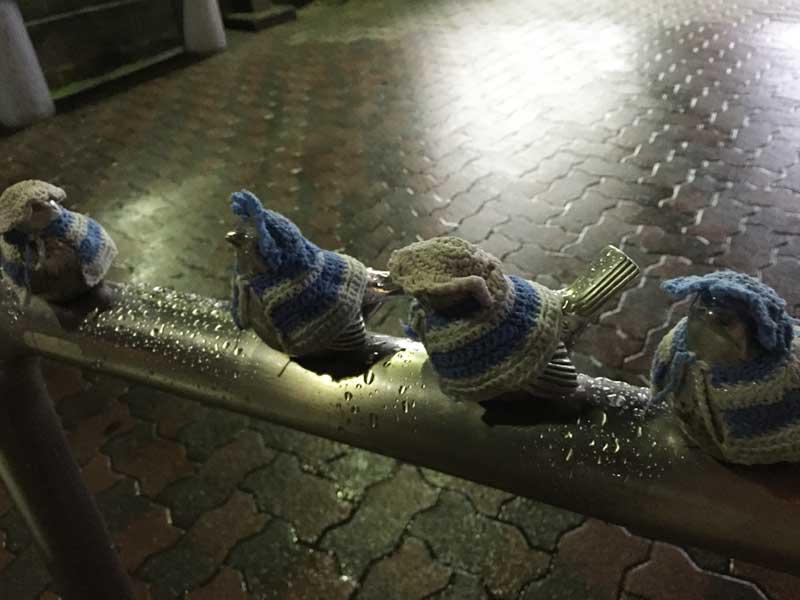 雨の日もチュン