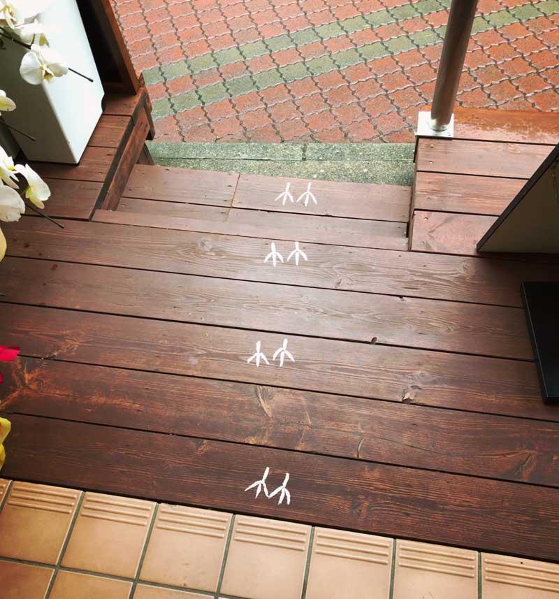 江ノ島スズメの足跡をたどって入店