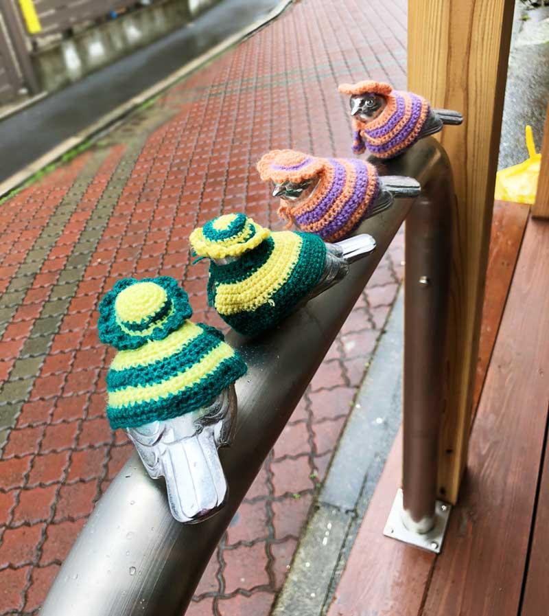 江ノ島駅のスズメと同じかわいい服を着ています!