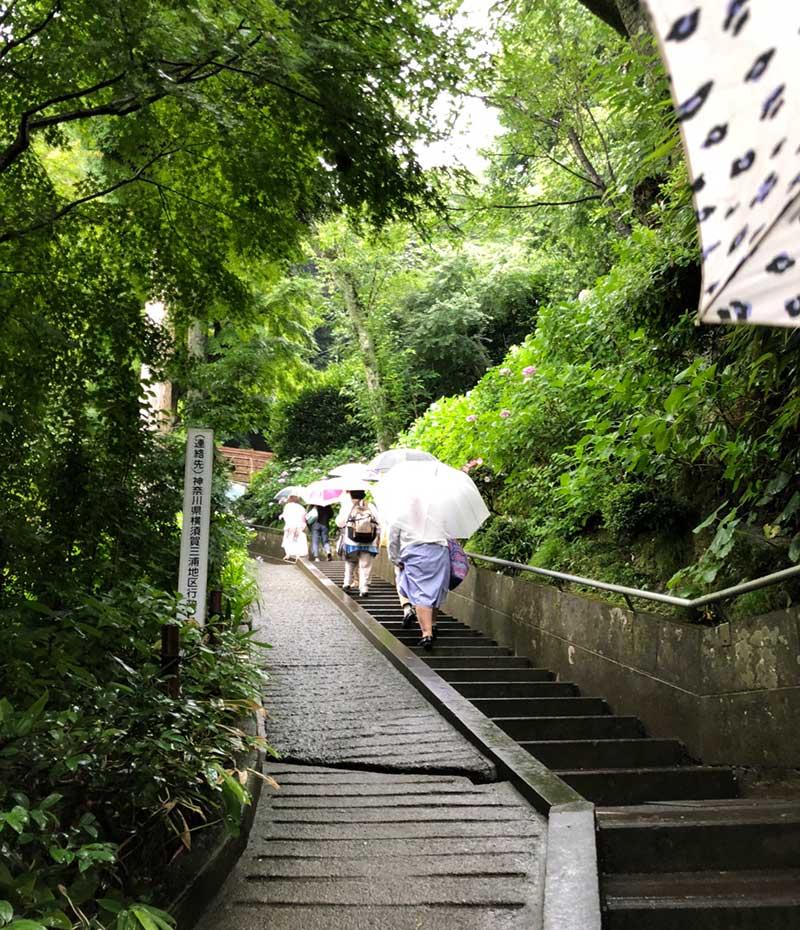 階段を登って行きます