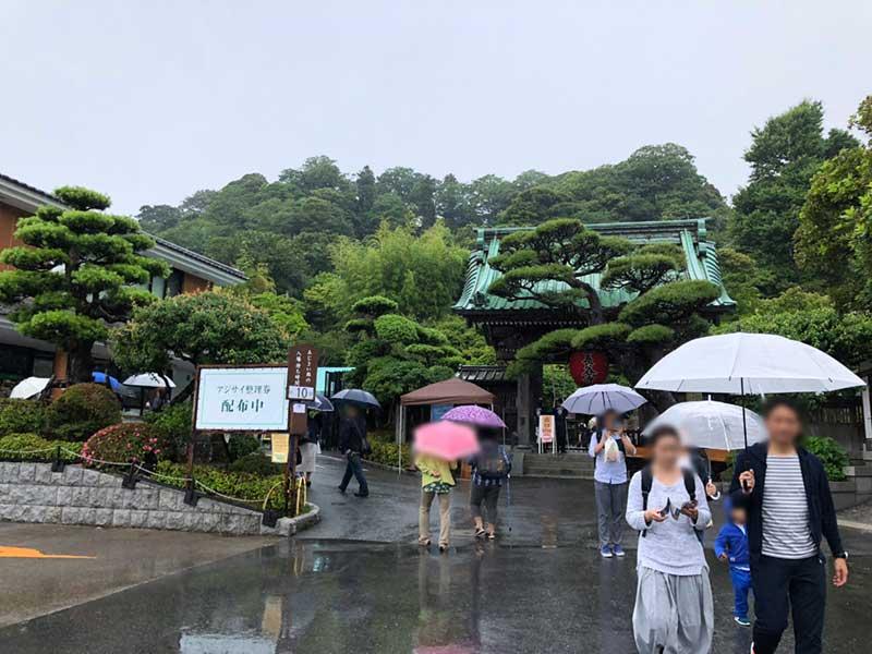 梅雨の長谷寺