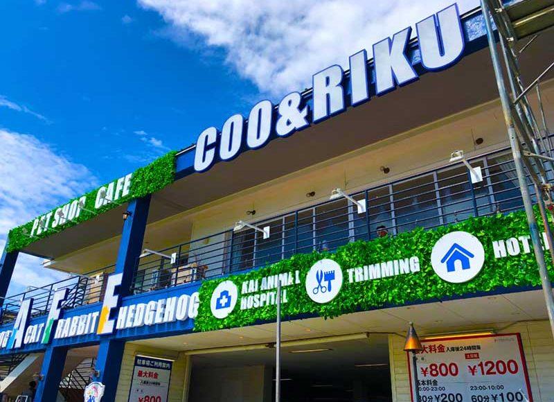 【江ノ島シュラスコがペットショップcafeに?】「Coo&RIKU」病院・トリミング・ホテルの複合施設?