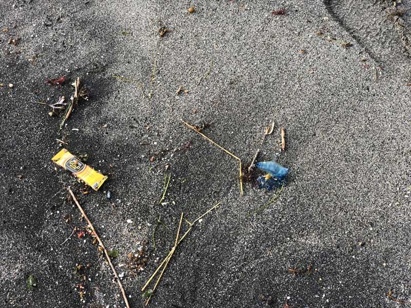 こっちにもゴミと一緒に青い物体が