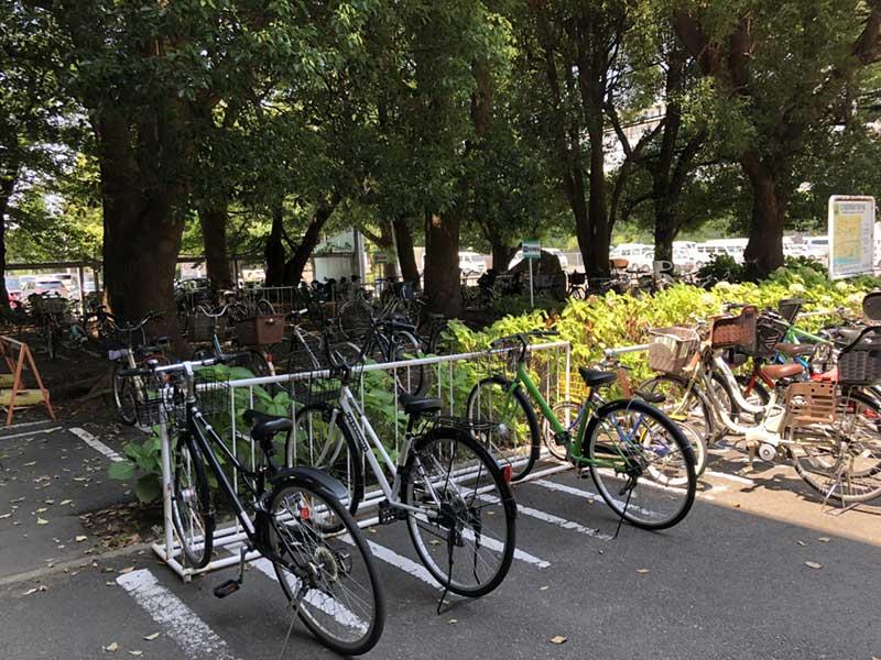 夏休みなので自転車が多い