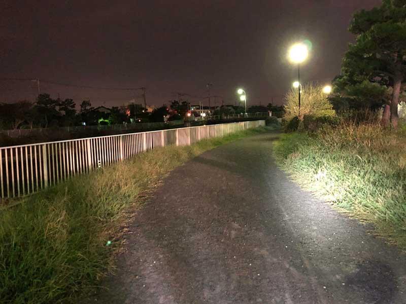 夜の引地川サイクリングコース