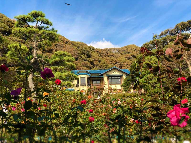 バラ園から見た鎌倉文学館