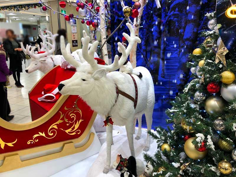 もうクリスマスの展示が始まっている