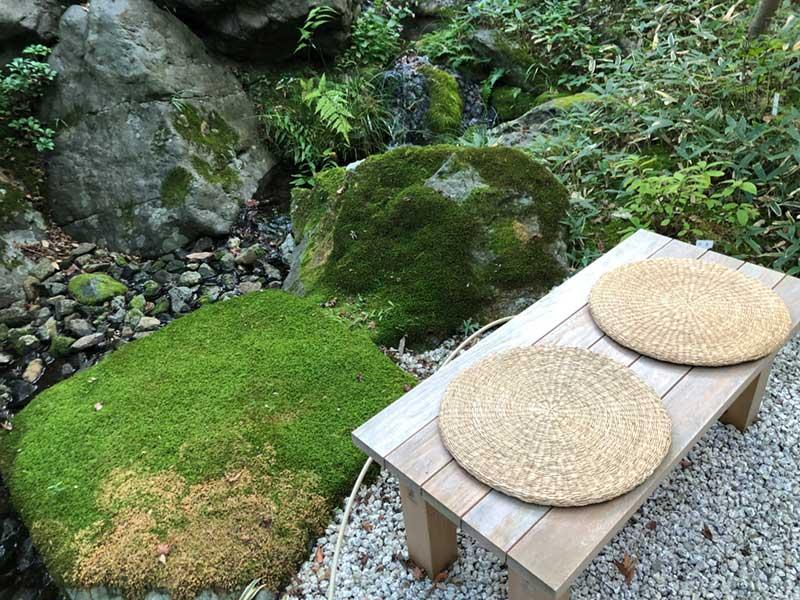 自然の苔の脇で一休み